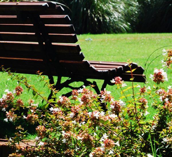 Jardines de Carrasco (particular)